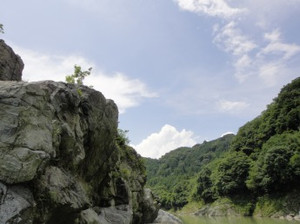 20120722_miyake_6