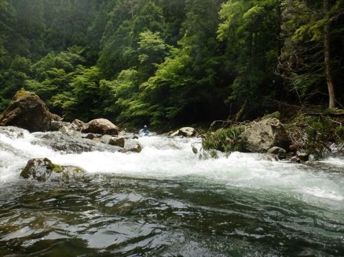 20200620_odonogawa_kayak_miyake-204_r